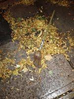 Broom on ground